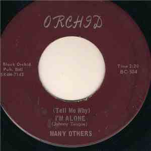 Many Others  - (Tell Me Why) I'm Alone / Can I Get A Witness