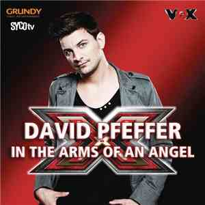 David Pfeffer  - In The Arms Of An Angel