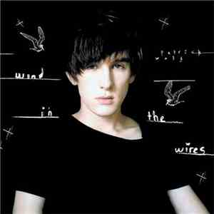 Patrick Wolf - Wind In The Wires